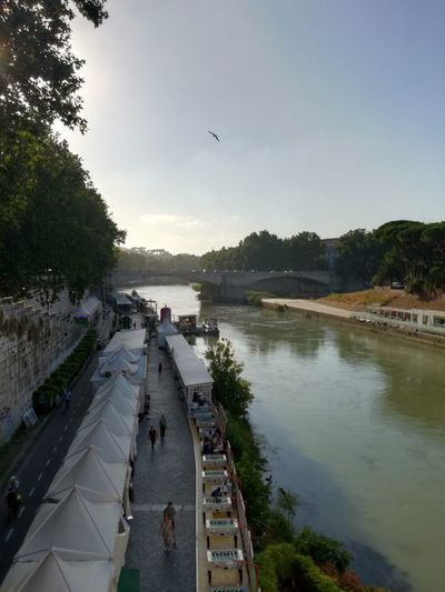Trastevere Sky Day Rome Italy Italia Europe Huaweiphotography Huawei P9 Lite Outdoors Green River Collection Riverscape River View Riverside Fiume Tevere River Fiume