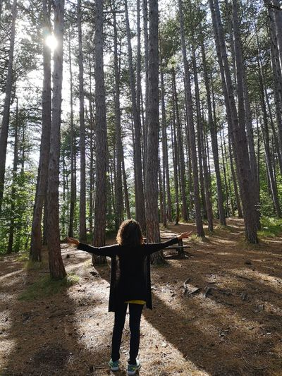 Rear view of woman standing by trees in forest