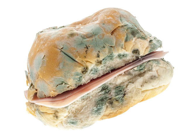 Mouldy Old Ham Roll Bread Close-up Food Food And Drink Ham Mouldy Old Roll Rotten Stale Studio Shot White Background