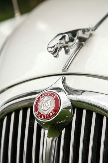 Auf der British Flair Messe in Hamburg . Car JAGUAR Oldtimer Silver  Logo Edel Emblem  Check This Out
