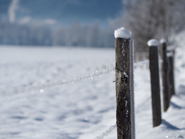 Beauty In Nature Close-up Cold Temperature Day Focus On Foreground Frozen Nature No People Outdoors Snow Weather Winter Wooden Post