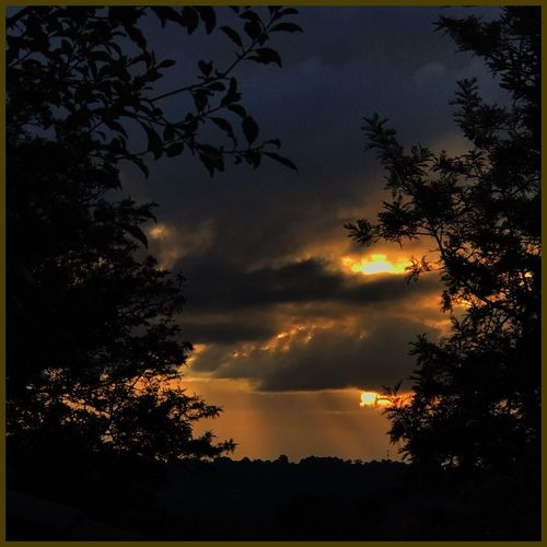 Sunset 🌤⛅️🌤 Sunset Sunset_collection Sunset Silhouettes Nature Inmyownbackyard Sunset_captures 🌤⛅️🌤