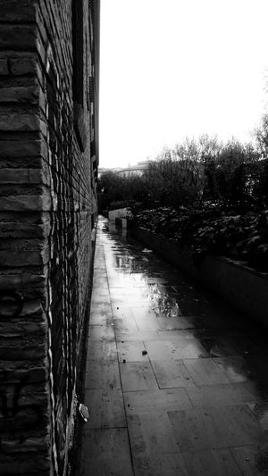 Sky No People Architecture Day Plant Nature Built Structure Footpath Wall Clear Sky Wall - Building Feature The Way Forward Outdoors Tree Direction Building Building Exterior Diminishing Perspective Narrow Alley Long Blackandwhite Monochrome Rain