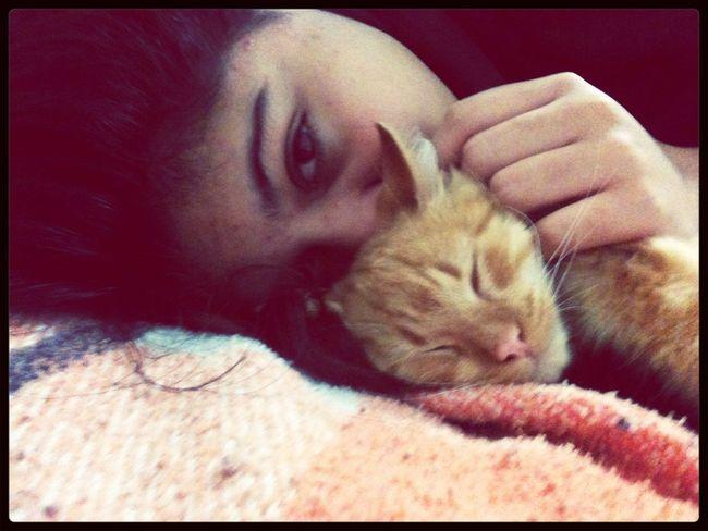 ^___^ My Cat
