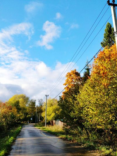 Color Tree Cable Sky Cloud - Sky Outdoors Road Day Nature Electricity Pylon No People Electricity  Telephone Line
