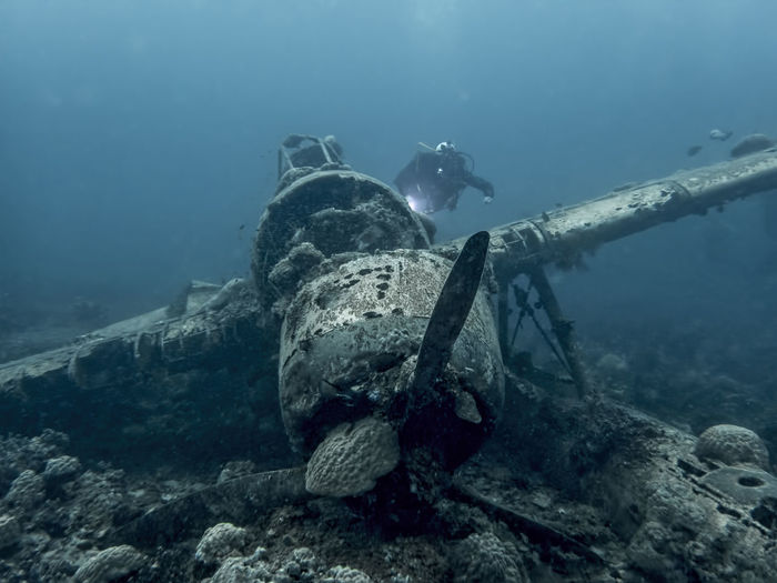 Seaplane Jake Wreck World War 2 Underwater Sea Water UnderSea Swimming Sport Sea Life Exploration Scuba Diving Aquatic Sport Crash Animal Wildlife Animal Themes Shipwreck Nature Adventure Animals In The Wild Marine Animal Underwater Diving