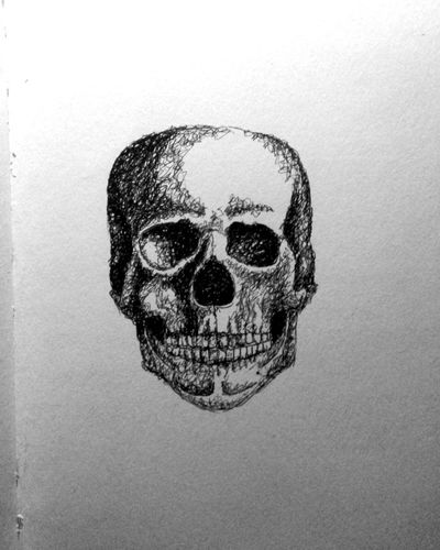 Skull Drawing Blackandwhite