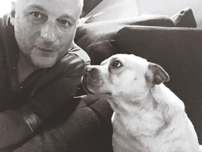 Bonjour Le Monde Moietmonchien Chien Dog Me And My Dog Moi Et Mon Chien 🐕