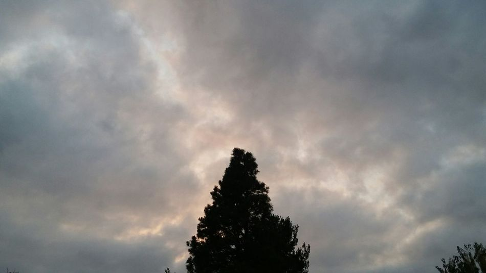 Taking Photos sky