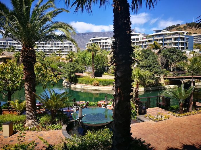 Cape Town Beauty Outdoors Sunlight Nature Architecture Sky Tranquility Follow Your Dreams Lifestyles City Beauty In Nature Sunny Freshness