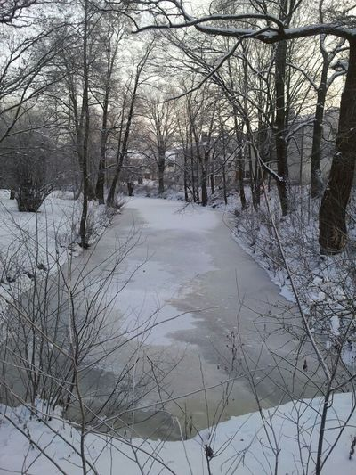 Stongo River And Ice