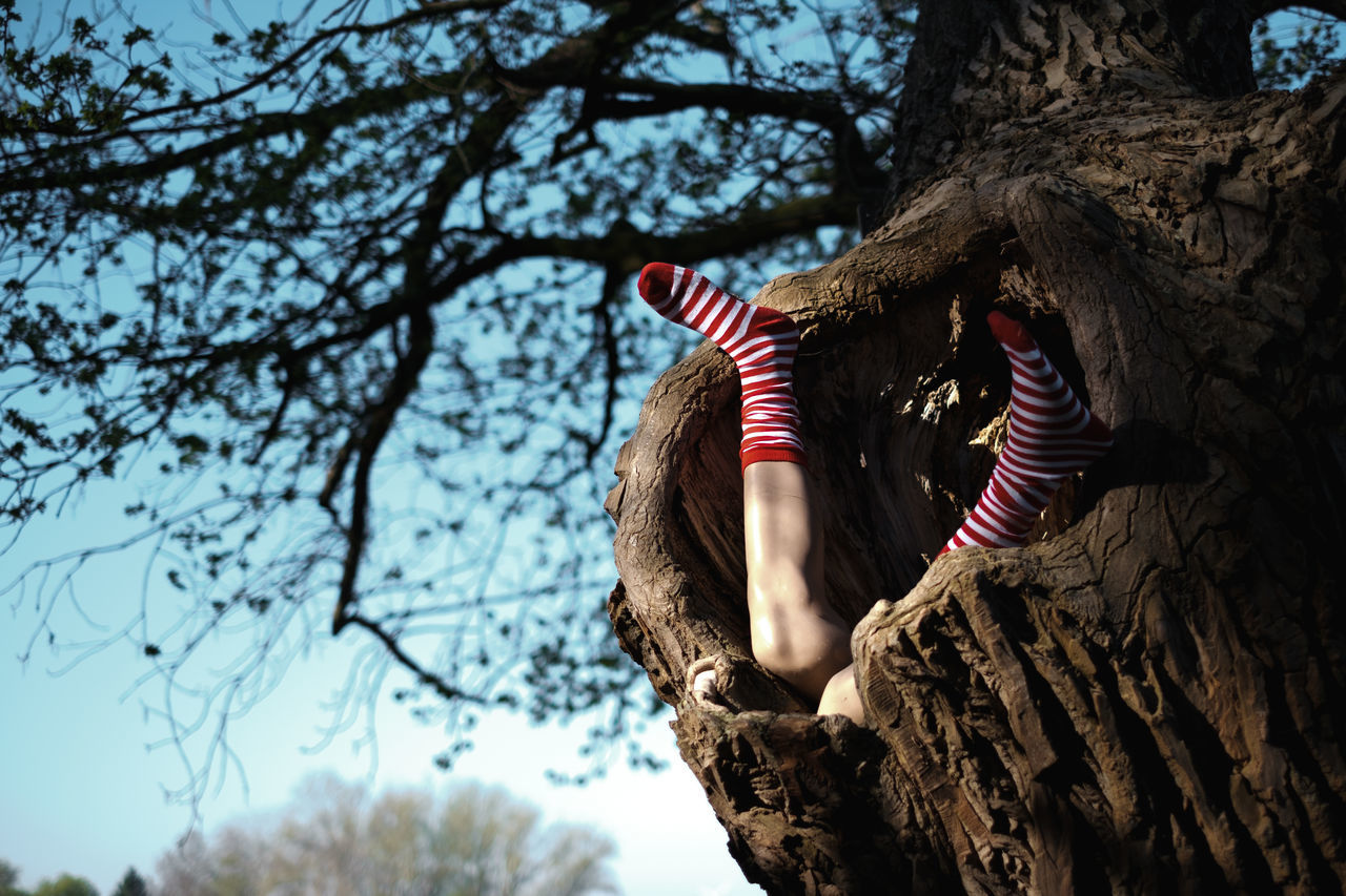 Low section of girl wearing red socks in tree trunk