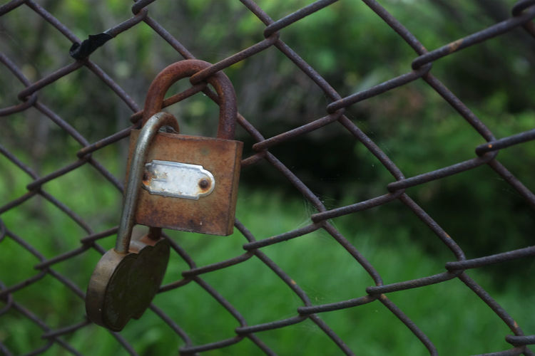 Protection Security Safety Metal Fence Lock Padlock Barrier Boundary Chainlink Fence No People Focus On Foreground Close-up Rusty Day Outdoors Hanging Love Safe Entrance Latch