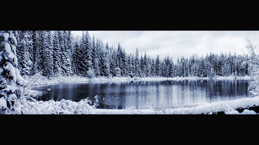 Cold Temperature Nature Scenics Snow Beauty In Nature Winter Tree No People Water Lake Outdoors Sky Day