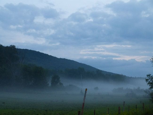 Settled fog Landscape Sky Beauty In Nature Tranquility Nature Fog Tranquil Scene Idyllic Field Agriculture Mountain Hazy  No People Outdoors
