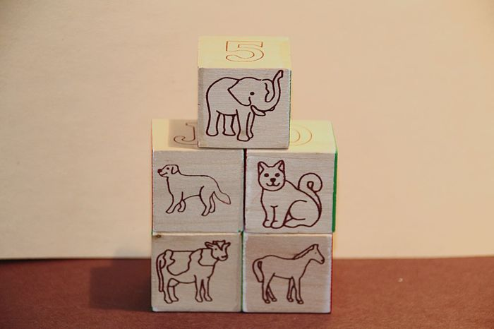 Animals Childs Toy Blocks Wodden Art And Craft Indoors  Sketch Doodle No People Drawing Close-up