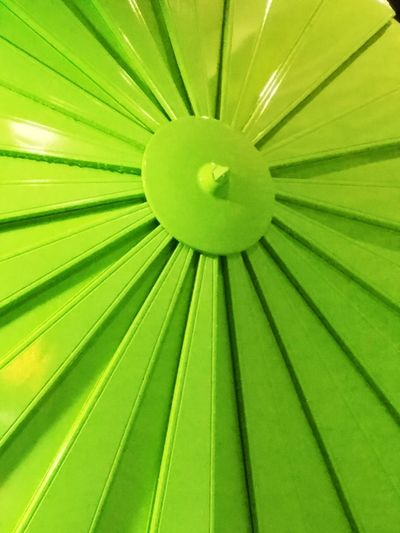 Green Color Pattern Full Frame Abstract Close-up Green Umbrella⛱ EyeEmNewHere Eyeemnewhere! EyeEmNewHere First Eyeem Photo Vibrant Color Brights Bright Colorful Flowers Day Outdoors Front View No People Hampton, NH Low Angle View Fun EyeEm Ready   10