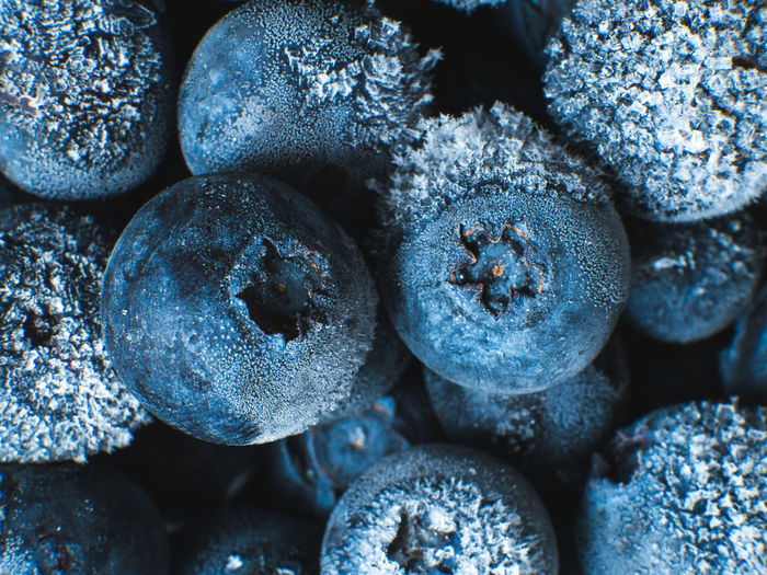 Healthy Breakfast: Close up of frozen blueberries, macro shot, top view Blueberry Breakfast Frozen Food Vegan Fruit Antioxidant Food And Drink Food Full Frame Close-up Freshness Backgrounds No People Wellbeing Indoors  Healthy Eating Large Group Of Objects Still Life Berry Fruit Selective Focus Cold Temperature Day Nature Winter Textured