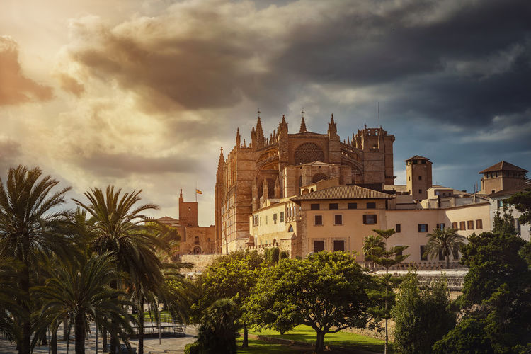 """""""La Seu"""" Cathedral of Palma Mallorca Balearic Islands SPAIN Built Structure Tree Architecture Building Exterior Cloud - Sky Building Sky Palm Tree Nature Tropical Climate Travel Destinations History Travel City No People Outdoors Gothic Style Cathedral Palma Holy Maria La Seu"""