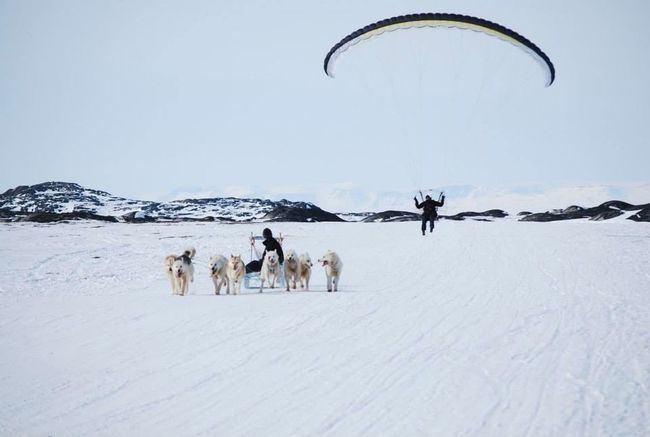 Eye4photography  This Week On Eyeem The Real Greenland Hello World Sleddog Sledging Check This Out Wintertime Hanging Out On The Road Snow❄ Need For Speed Flying Flying Over Your Imagination Flying Low Transportation