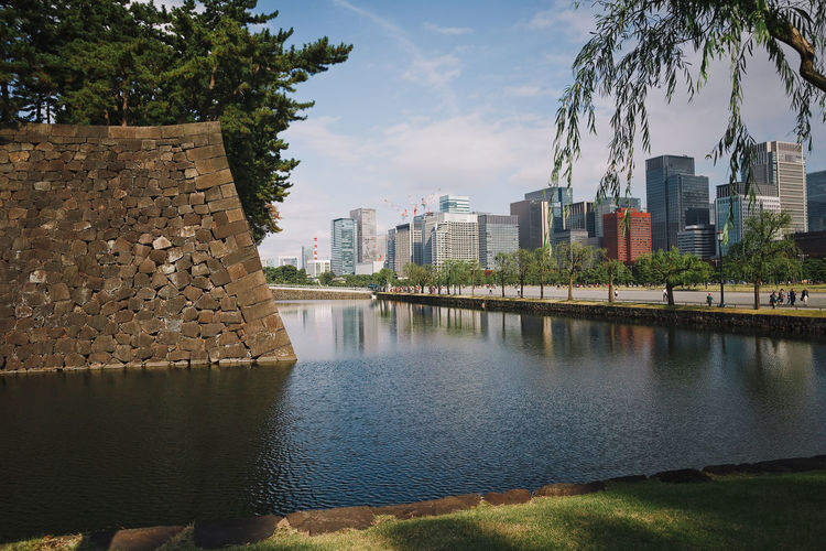 Beautiful view of downtown Tokyo with skyscrapers and green park with pond Water Architecture Building Exterior Built Structure Tree Sky Plant Nature City River Day No People Waterfront Building Cloud - Sky Reflection Outdoors Growth Japan Tokyo,Japan ASIA