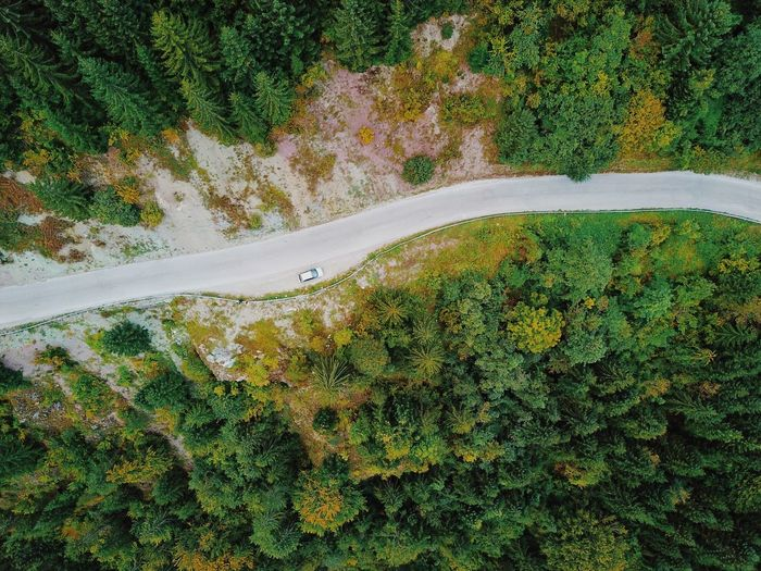 Mavic Dronephotography Mavic Pro Dronephotography Plant Beauty In Nature No People High Angle View Growth Green Color Tree Day Outdoors Road Tranquil Scene Tranquility Landscape Non-urban Scene Land Sunlight Environment Nature Scenics - Nature