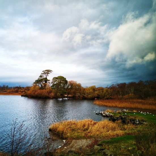 Lough Leane,