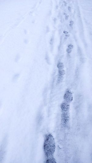 Ghosteps Pathway Cold Days Snow Winter Cold Temperature Backgrounds Snowflake Full Frame Close-up Paw Print FootPrint