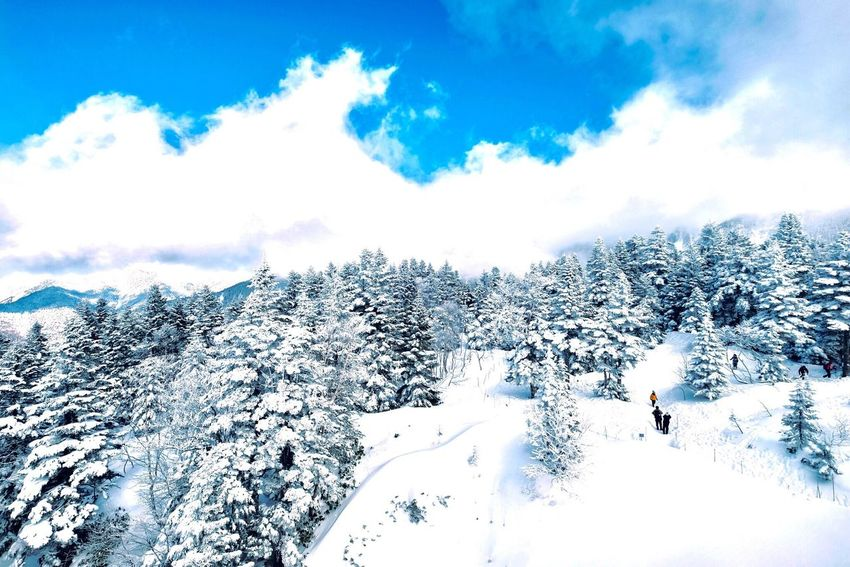 Cold Temperature Snow Winter Beauty In Nature Scenics Weather Sky Nature White Color Cloud - Sky Tranquil Scene Tree Tranquility Outdoors Day Non-urban Scene Mountain Landscape Vacations No People Japan