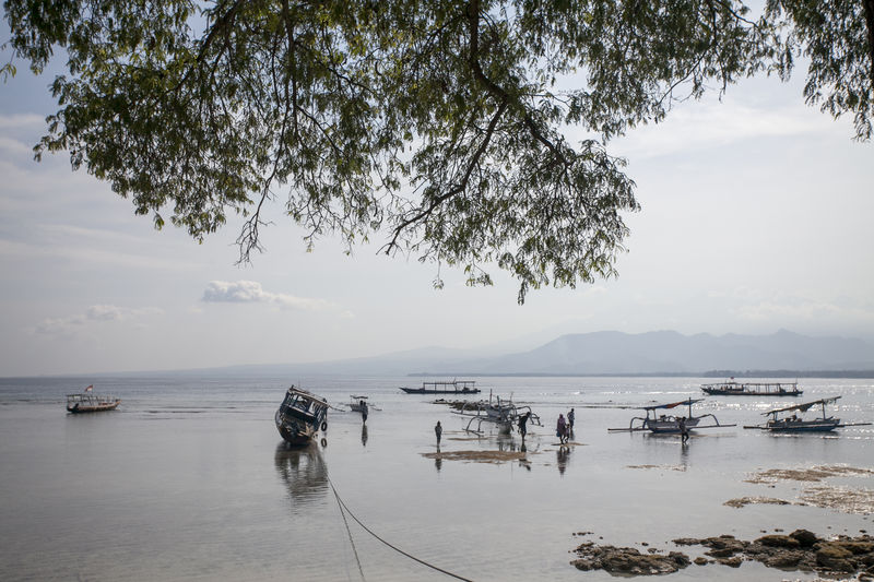morning scene Boat Calm Foggy Morning Gili Island INDONESIA Misty Morning Light Morning Sky, Ocean Outdoors Reflection Scenics See Summer Transportation Travel Travel Photography Tropical Climate Vacation Water Water Reflections