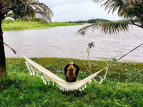 Não existe um caminho para a felicidade. A felicidade é o caminho. 🌿❤️✅ Sintonia Paz ✌ Brazil Plant Water Tree Nature Grass Green Color Day Beauty In Nature Tranquility Sky No People Growth Animal Themes Vertebrate Lake Animal Outdoors Bird Sitting