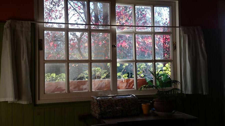 Window Home Interior Architecture