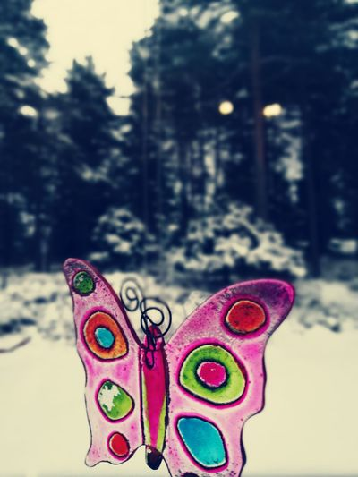 Millennial Pink Butterfly Snow Cold Spring Winter Outdoors Childhood 2017 April Odin Glass Objects  Glass Art Glass Butterfly