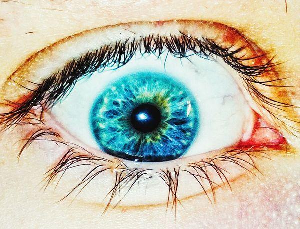My Eye Blue Eyes Eye