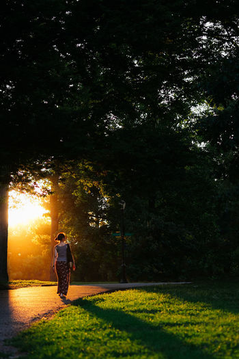 Sunset Rays Sylvan Forest Woods Park Green Trees Verdant Nature Natural Young Woman Woman Girl Walking Strolling Exploring Meandering Solo Alone