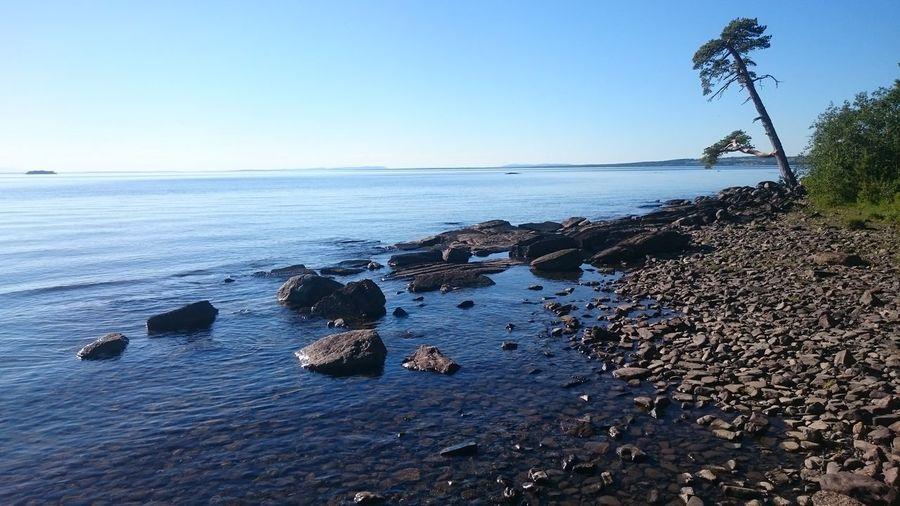 Storsjön Jämtland Stones & Water Tree Lake Bynäset Frösön Calmness Water Clear Sky Beach Sky Horizon Over Water