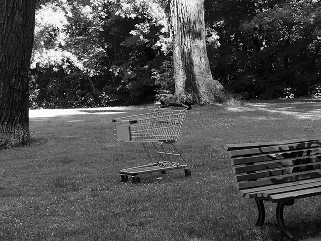 I Found A Shopping Cart Taking Photos My Fuckin Berlin Shopping Cart My Eyes My Berlin Blackandwhite B&w No People