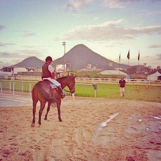 Jockey
