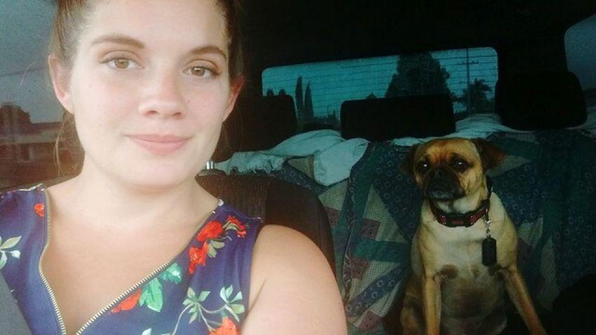 Roadtrip Cloudy Day Sandiegobound That's My Dog My Bestfriend Midasthefriendlychug