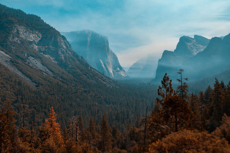 Foggy Yosemite