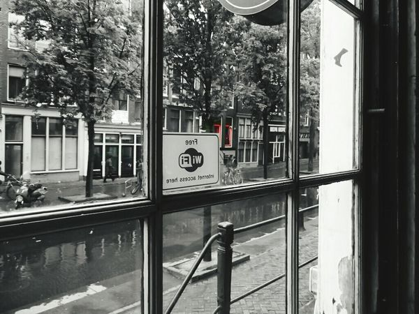 Red Light District Amsterdam Holiday POV Black & White The Best From Holiday POV Redlight Red