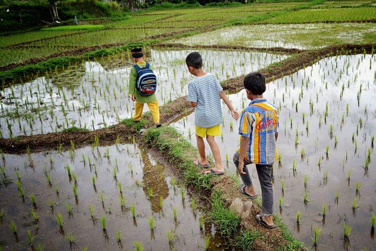 Rear view of people walking in farm