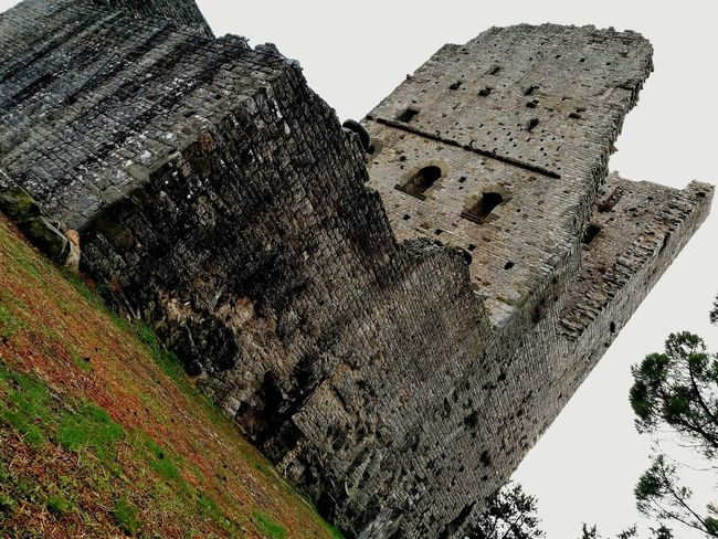 History Ancient Outdoors Nature Tree Day Ancient Civilization Sky Travel Destinations Low Angle View No People Architecture Growth Mountain Beauty In Nature Toscany Italy