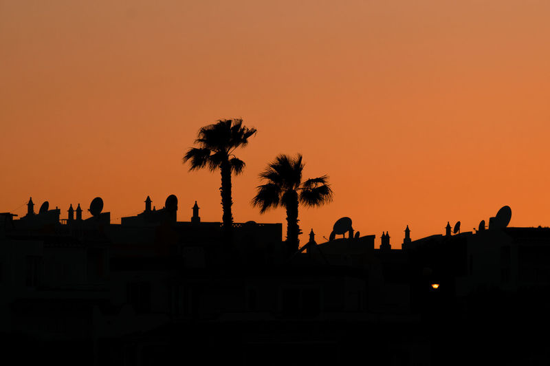 Silhouette palm trees and buildings against clear sky during sunset
