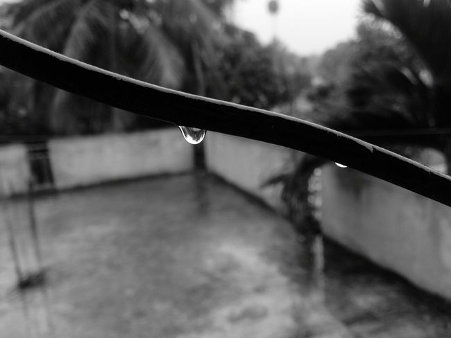 Rainy Day Dew Good Weather Pure Bliss Monochrome Black And White Photography Xperia S