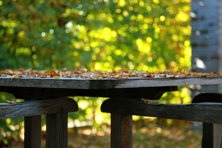 Fallen autumn leaves on wooden table by chairs
