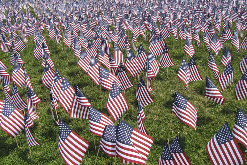 Armed Forces Beauty In Nature Cemetery Day Emotion Flag Government Grass Grave Large Group Of Objects Memorial Military Nature No People Outdoors Patriotism Striped
