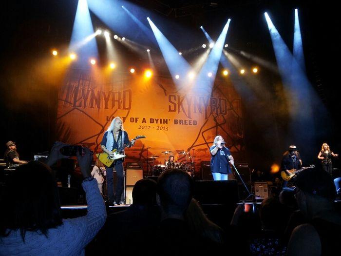 Lynyrd Skynyrd Live In St Louis,Mo 2012