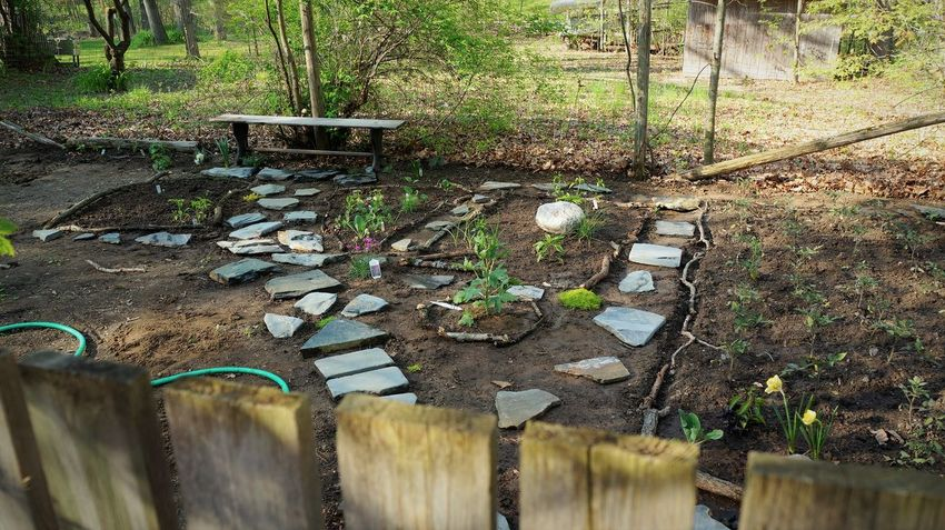 Garden beyond the gate Gate Beyond Day Garden Garden Gate Garden Photography Growth Nature No People Outdoors Plant Tree