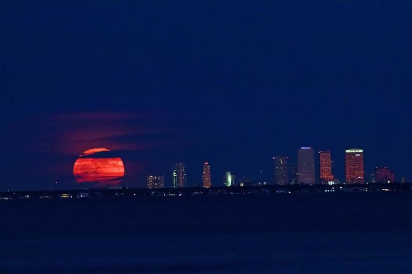 Tampa Supermoon Urban Skyline Supermoon2017 Cityscape Skyscraper Travel Destinations Night City Scenics Water